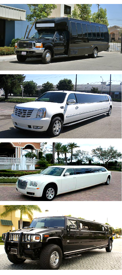 party bus limo service prices